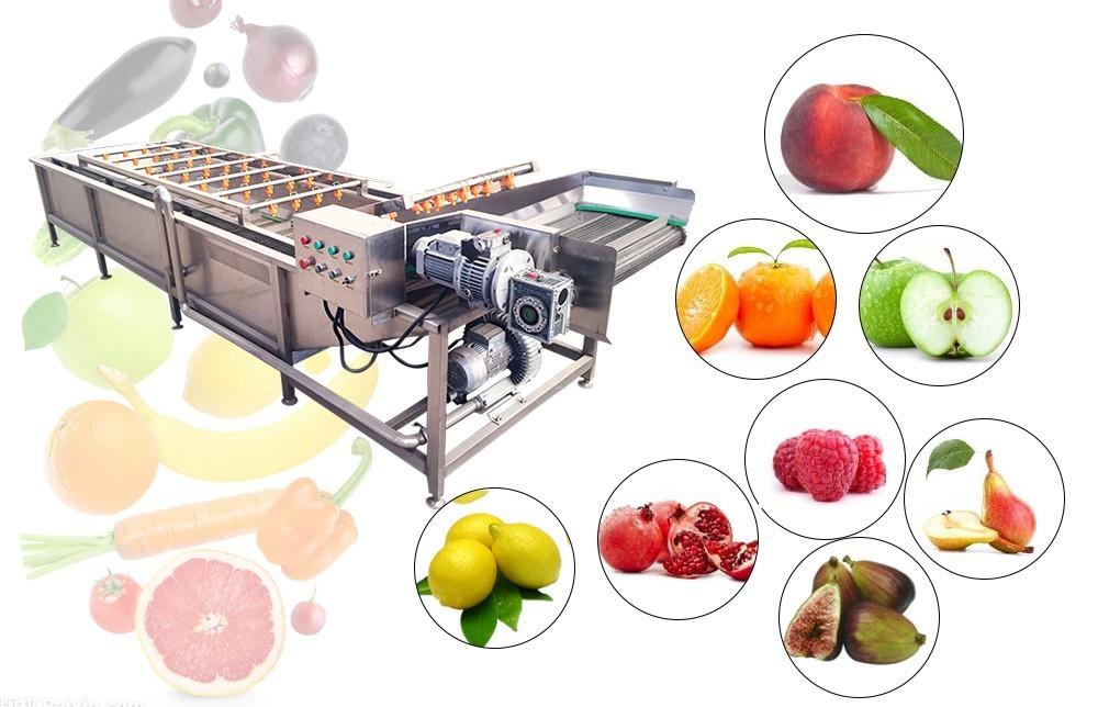 سعر غسالة الفواكه والخضروات الصناعية (1)
